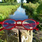 glasses-1582473_1920